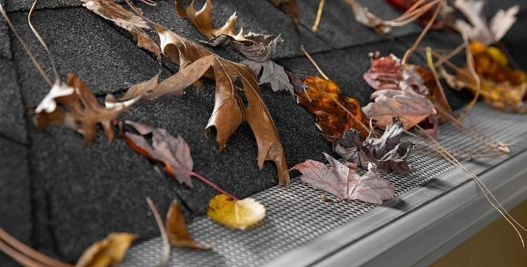 What Is The Best Gutter Guard & Leaf Guard For Best Use In Bushfire Areas